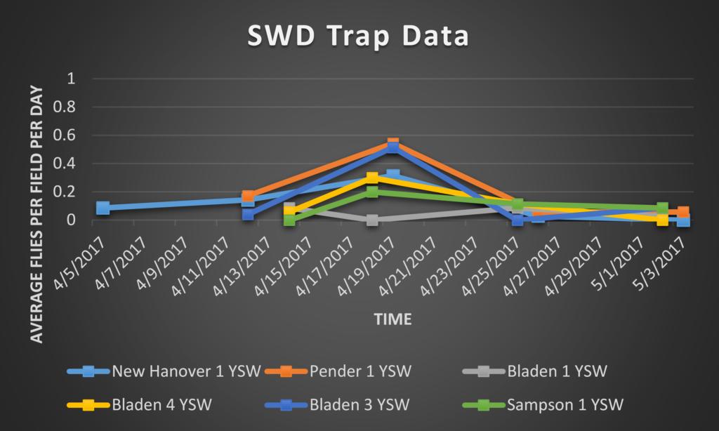 Spotted Wing Drosophila trap data 5/5/17
