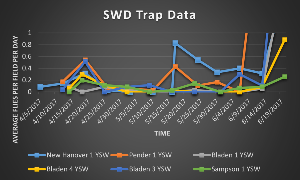 SWD trap data graph 2017
